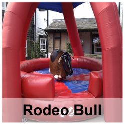 Rodeo Bull Winter Special (3 hour max hire) inc Free shelter